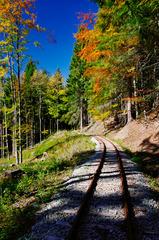 Kysucká lesná železnica