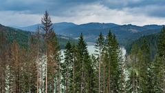 Kysucká divočina