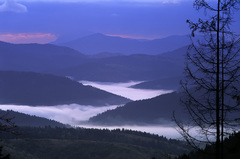 Bystrická Dolina