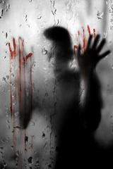 zápisky vraha