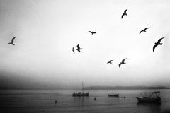 ráno na mori