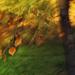 jesenný impresionizmus