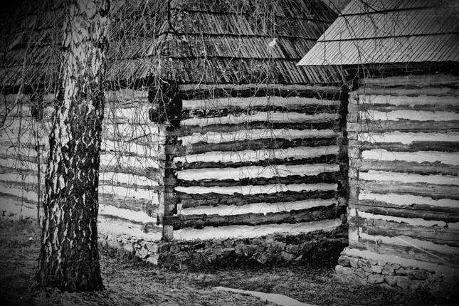 drevené línie