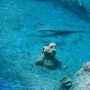 žena z jazera