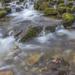 Sutovsky potok