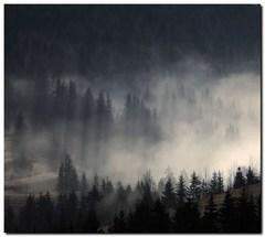 ...a les dýcha...