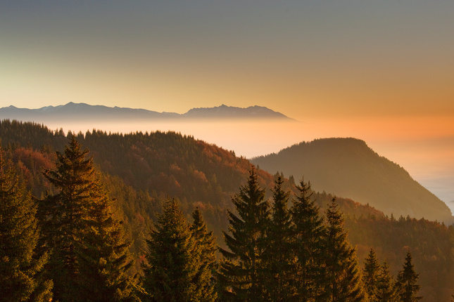 Krajinka vo svetla rána
