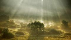Lúče slnka