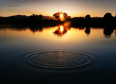 Water ring