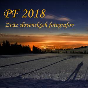 PF 2018 ZSF