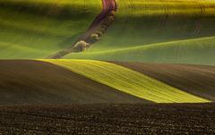 Krajina línií
