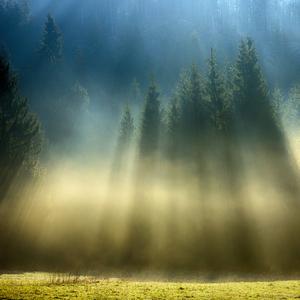 Krajina tieňov