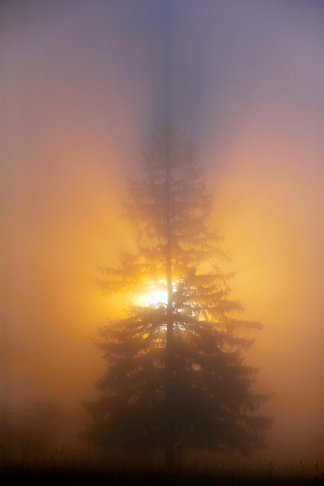 Krajinka  svetla 4