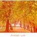 Prechádzka v parku