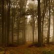 Čarovná jeseň