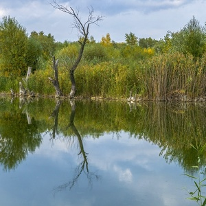 Krajina v zrkadle