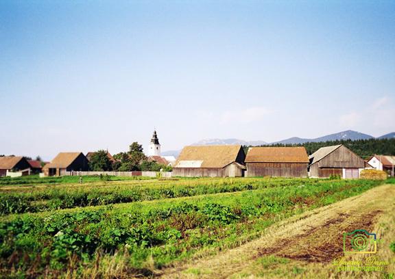 Dedinka vo Veľkej Fatre