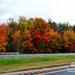 Jeseň vo Vermonte