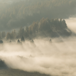 ... hra svetla a  hmly ...