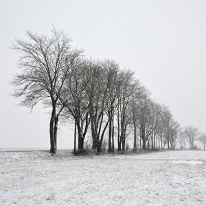 ... zimné línie ...