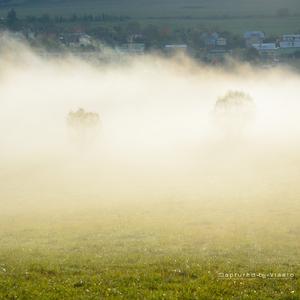... a hmly pominú ...