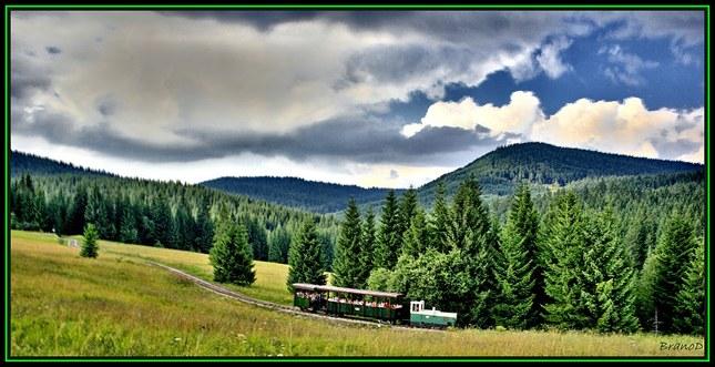 Oravská lesná železnica 2010