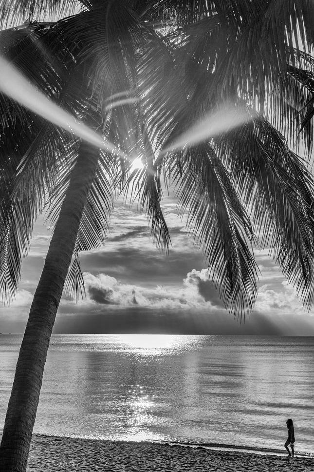 Rano na plazi