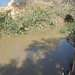 Rieka Jordan v Betanii