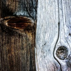 Krajina dreva 38