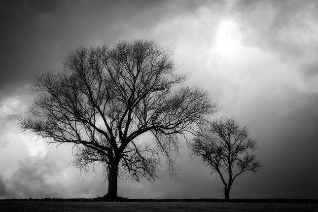 Dvaja pred búrkou