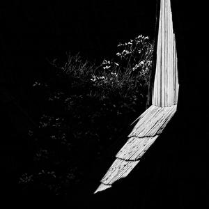 Čierno-biela