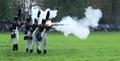 Napoleonské dny