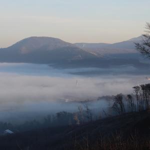 Sološnica v rannej hmle