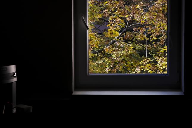 Za oknom