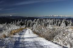 Biela cesta dole