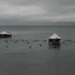 Kľud na jazere