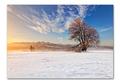 Zima v Lapszanke