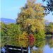 Badínsky rybník, september 2013