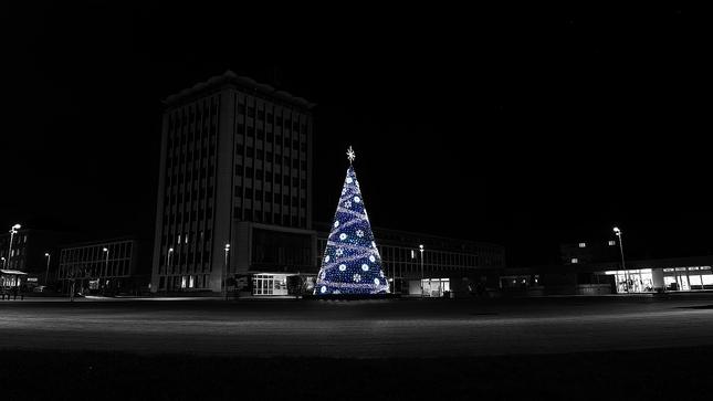 Strom vianočný