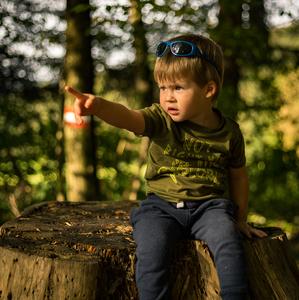 * V Guličkovom lese *