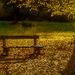 Jesenné ráno I.