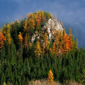 jesenná Ostrá skala
