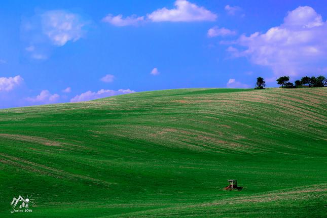Windows 11 :o)