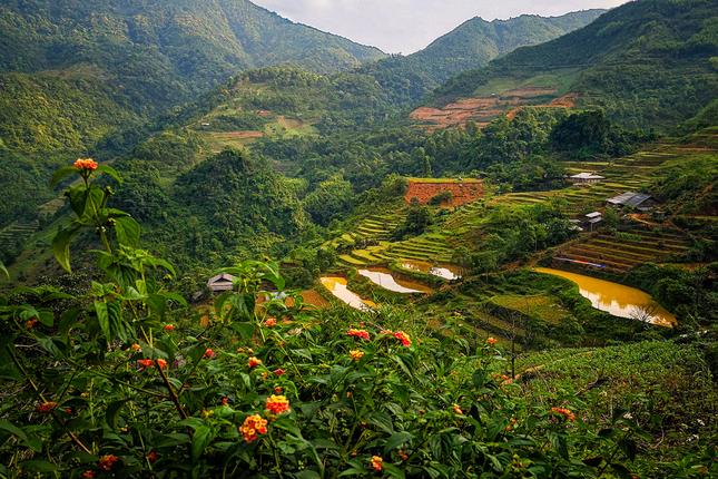 jar vo Vietname