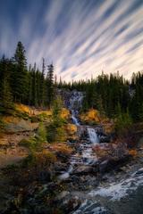 Tnagle Creek