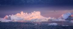 noc v zajatí ľadu
