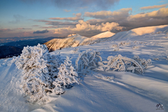 zimná idylka