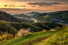 jar v Slovinsku