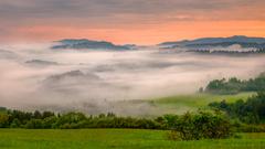 Pieninské hmly