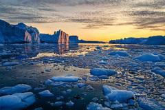 grónska polnoc